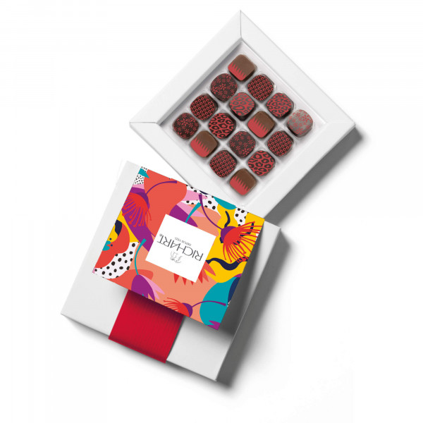 Petits RICHART Spiced Box of 16 filled chocolates